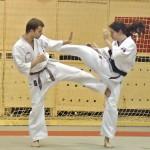 Campionatul Naţional Ashihara Karate - Repetiţie generală în vederea organizării Campionatului Mondi...