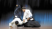 Congres Internaţional Aikido – Tokyo 2012