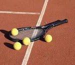 Sapte romani in cadrul turneului de tenis la Rolland Garros