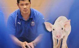 Managerul echipei naţionale de rugby, amendat cu 100 de porci