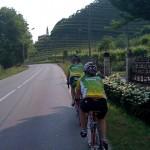 Calendar competiţional stufos pentru Federaţia Română de Ciclism