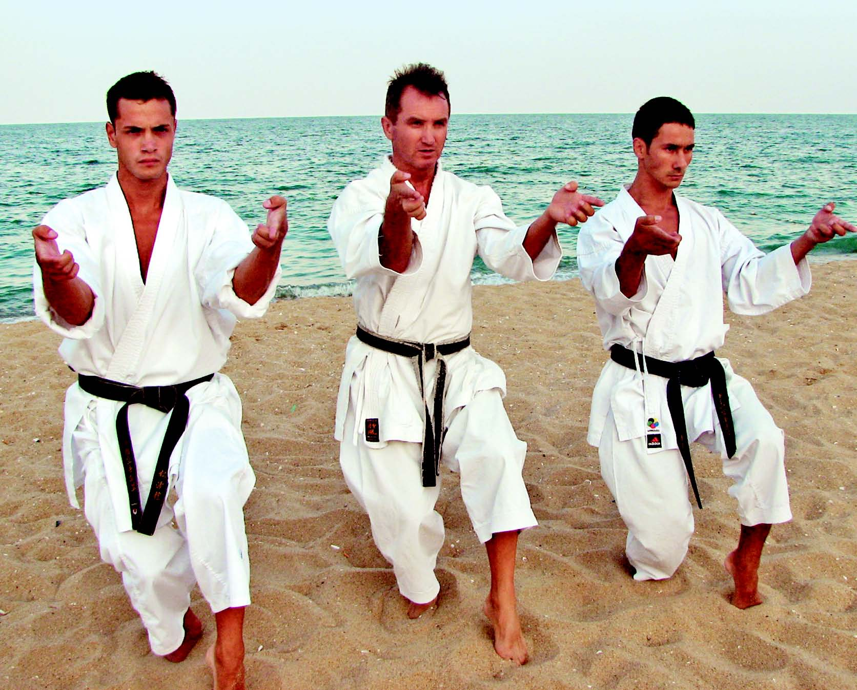 SHIHAN AUREL PĂTRU – PREŞEDINTELE SKDUN (Shotokan Karate Do of United Nations)