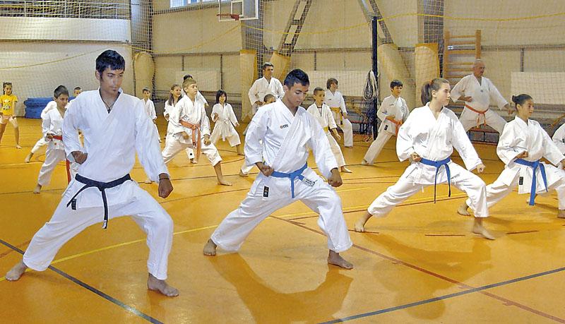 DEPARTAMENTUL DE KARATE SKDUN – Clubul Sportiv Musashi San 2004 Bucureşti