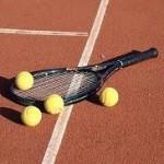 România - Cehia în Grupa Mondiala a Cupei Davis