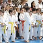 SKDUN are viitorul asigurat în România