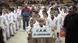 CSM Sf Gheorghe  - Judo