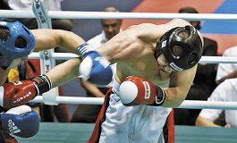 Campionatul European WAKO, la Bucureşti