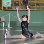 România va organiza Campionatul Mondial Open de patinaj artistic pe role inline