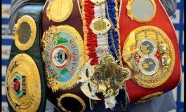 Boxul profesionist ar putea avea campioni unici pentru fiecare categorie de greutate