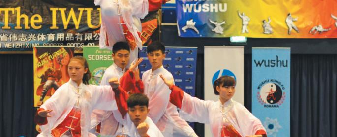 wushu-3