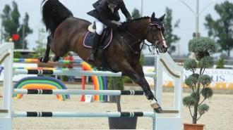 echitatie-salonul-calului-2014
