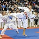 """Un vechi practicant de karate îi scrie primului ministru: """"Doamna Lipă a ucis artele marţiale!&..."""