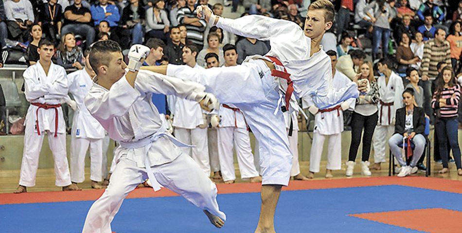 """Un vechi practicant de karate îi scrie primului ministru: """"Doamna Lipă a ucis artele marţiale!"""""""