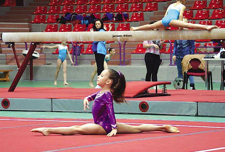 Un posibil viitor Centru Olimpic de interes naţional