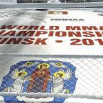 Campionatul Mondial de MMA - 2014