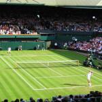 sport-tennis-tournoi-grand-chelem-wimbledon-01