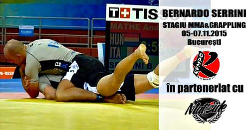 Stagiu MMA & Grappling 05.-07.11.2015, Bucuresti