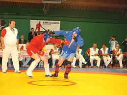 Uniune sambo-judo în Belarus