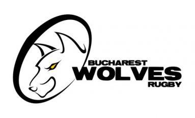 Programul Lupilor București în Amlin Cup