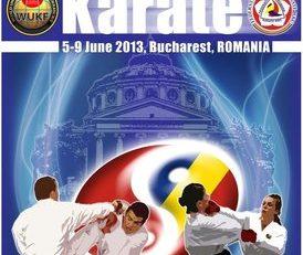 Rezultatele după prima zi de concurs a Campionatelor Naţionale de karate pentru cadeţi şi juniori