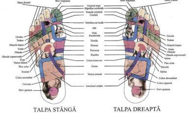 Reflexoterapia, minunea din propriile noastre mâini