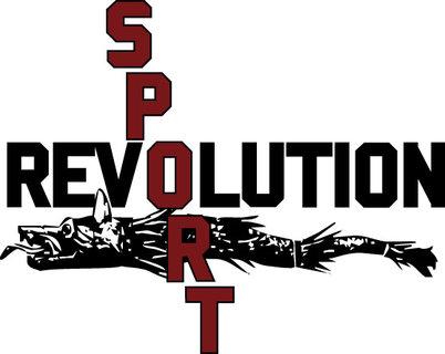 """Despre hochei şi sambo, în cadrul emisiunii """"Sport Revolution"""""""