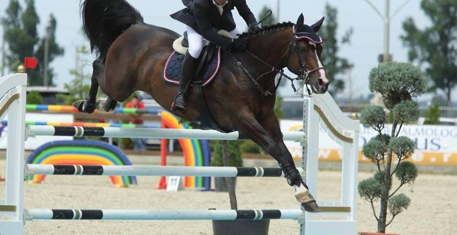 Salonul calului, la a treia ediție
