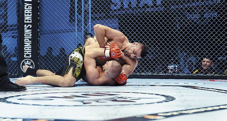 Adrian Preda – Profil de campion